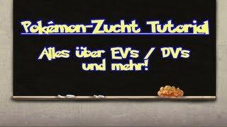 Pokémon-Zucht Tutorial (EV / DV) - Vom Baby zum Turnier-Pokémon [German]