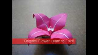 How To Make An Origami Fuchsia Flower
