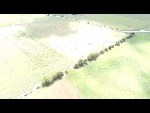 San Antonio Corn Maze - Circle N Maze - La Vernia TX