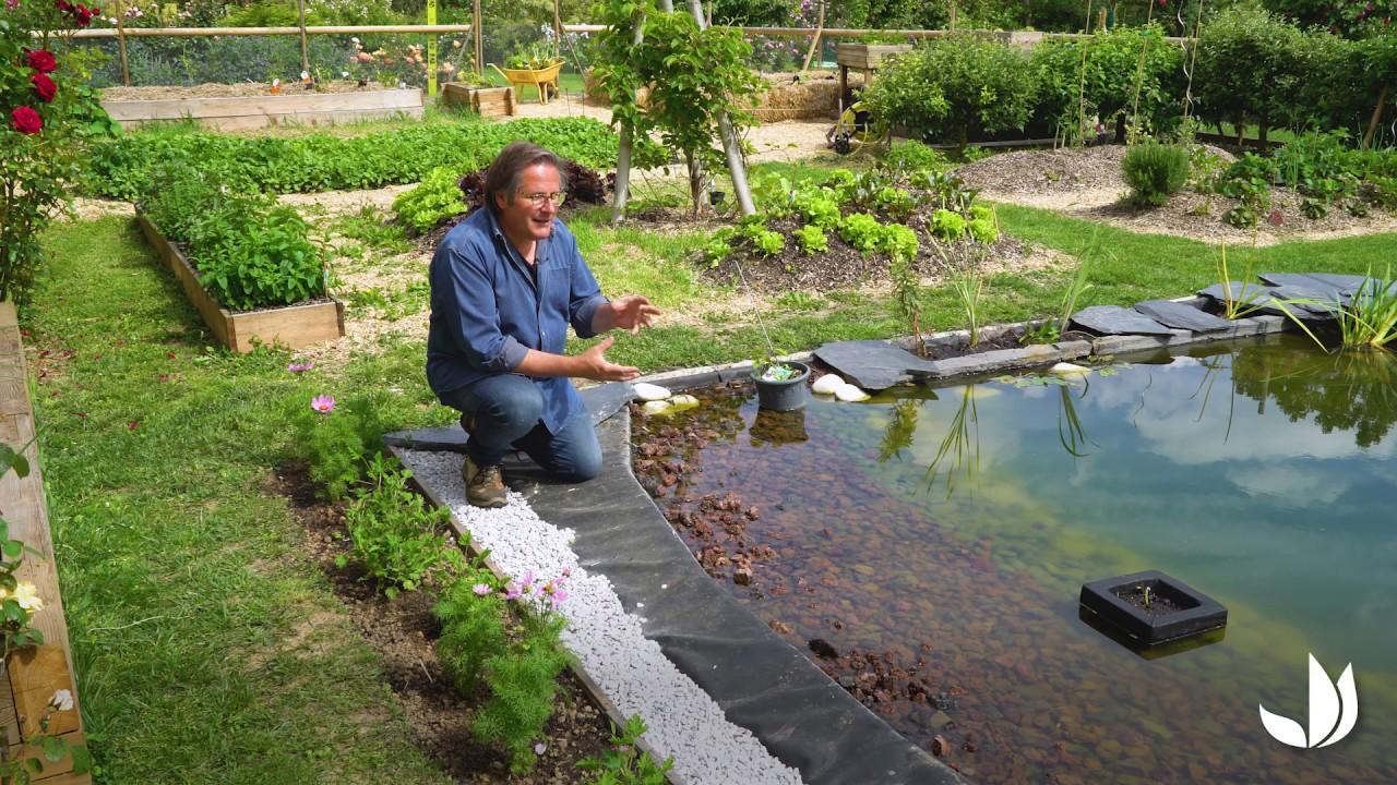 Permaculture : développement d\'un bassin naturel (3/3) - Jardinerie  Truffaut TV