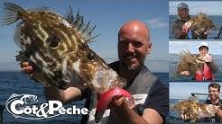 La pêche du Saint-pierre au Black minnow