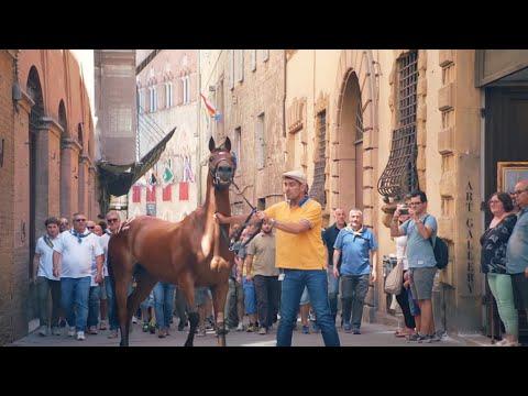 #GoogleGrandTour The Grand Tour of Italy