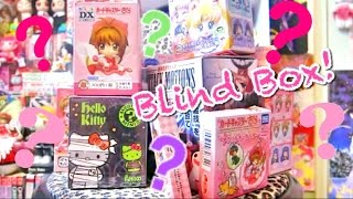 ANIME Blind Box Opening! (Cardcaptor Sakura, Sailor Moon, ect)