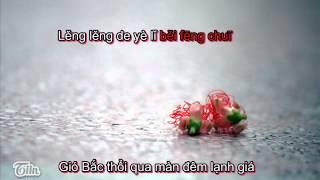 Hoa Rơi - Lạc Hoa- Lâm Tâm Như - Karaoke beat không lời