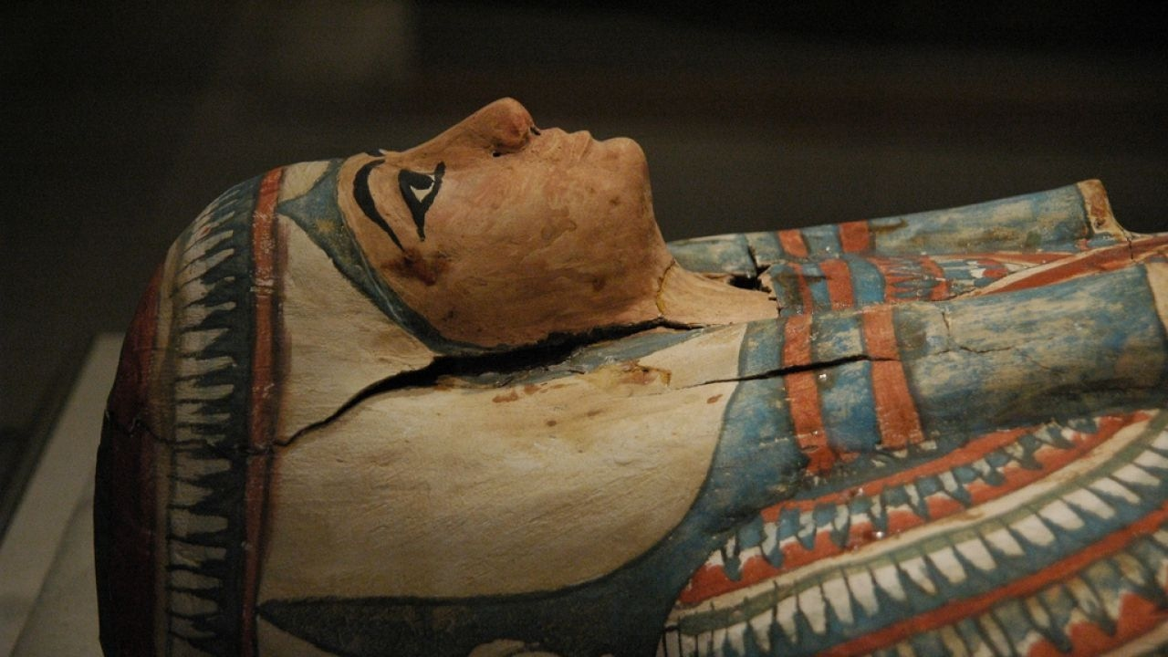 Decoding ancient Egyptian DNA