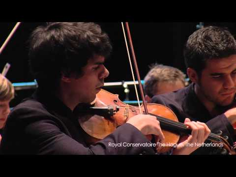 Orchestra project Second Viennese School full version