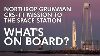 Northrop Grumman's CRS-11 Mission: What's on Board?