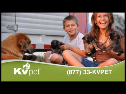 KV Pet Supply - Only The Best - 15 second spot