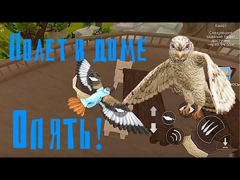 WildCraft 9.1 БАГ полёт орла в доме на дереве!