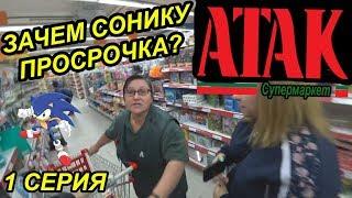 СОНИК В РЕАЛЬНОЙ ЖИЗНИ / 1000 ПТИЦ ПРИВЕЛИ В МАГАЗИН