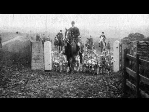 Fox Hunt (1914)