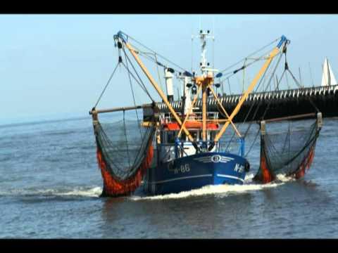 bateau de peche nieuwpoort
