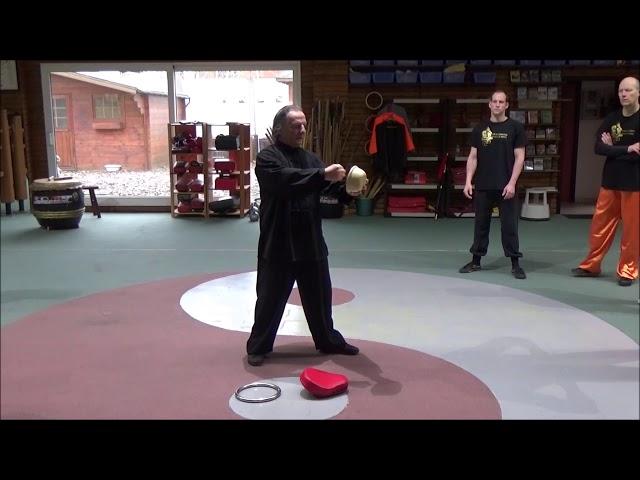 2e week opleiding Yin en Yang en Fajin GM Walter Toch