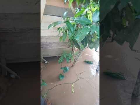 Banjir Di Nagari Durian Gadang