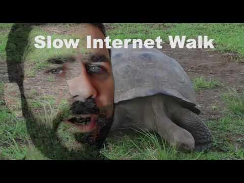 SEATTLE: Slow Internet Walk WED OCT 26
