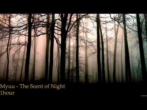 Myuu - Scent Of Night | 1 HOUR
