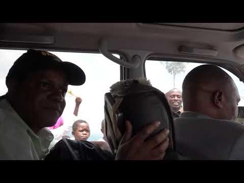 Super Tinga na Africa