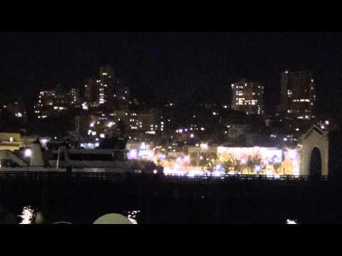 Wildlife sounds @ Pier 39 San Francisco CA @ Night