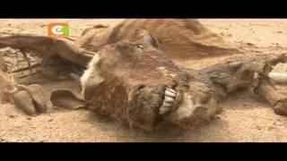 Njaa yakithiri Turkana