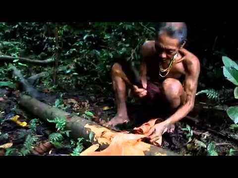 A look inside the lives of the Mentawai tribe in Indonesia