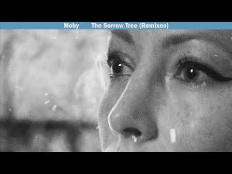 Moby - The Sorrow Tree (Moby's Post Hominum Remix)