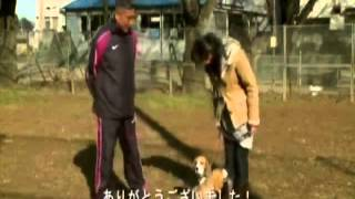 犬のしつけ【ホームページ】⇒ http://duga.info/c/dtovcf 日本一のカリ...
