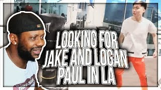 LOOKING FOR JAKE AND LOGAN PAUL IN LA REACTION