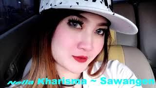 Dangdut Koplo Populer Nella Kharisma ~ Sawangen (Karaoke)