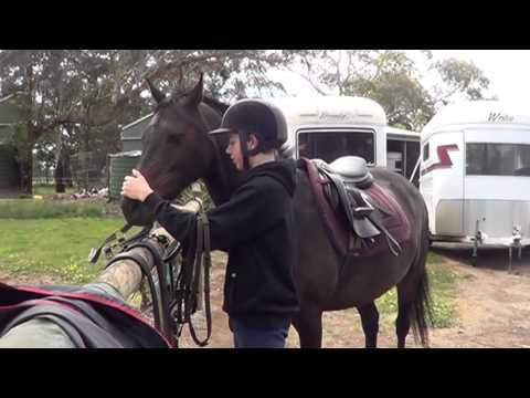 Oscar preparing to ride