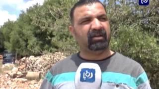 دعوات لتكثيف العمل لاستقبال الموسم السياحي في عجلون