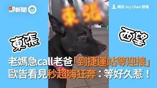 媽急call老爸「到捷運站裝下班」 歐告秒超嗨狂奔!|寵物|狗|迎接