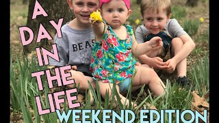Day In The Life | DITL | Weekend Edition