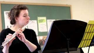 Handel: Flute Sonata in E minor: III. Adagio IV. Allegro