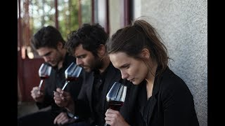 Víno nás spojuje (Ce qui nous lie / Back to Burgundy) - oficiální český HD trailer
