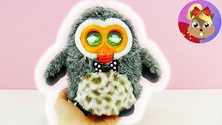 电子宠物 猫头鹰 HIBOU 可爱 说话 交流 跳舞 毛绒 玩具 娃娃 动物 会动 开箱 展示 2