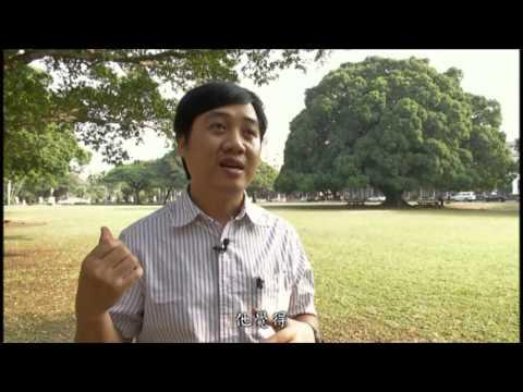 第1名 越南總統 臺灣女婿 - YouTube