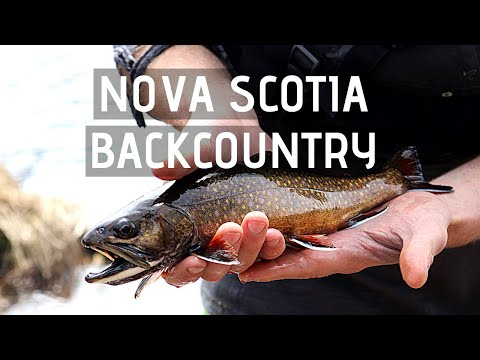 Nova Scotia Backcountry: Ep. 2 - Ship Harbour