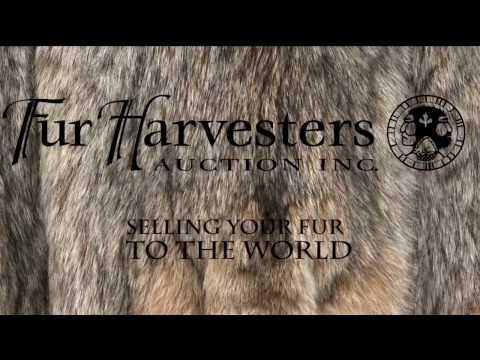 Fur Harvesters NWT Season 1 Episodes #7 HD