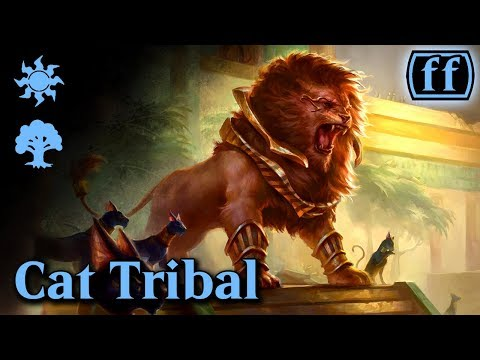 Friendly Friday - Standard - Cat Tribal