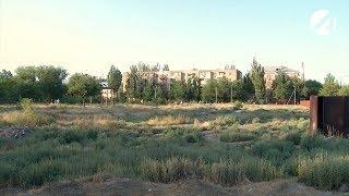 Астраханские общественники бьют тревогу: в городе острая нехватка парков и зелёных зон