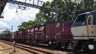 EF66 113 貨物列車 北方貨物線にて 2017/08/06