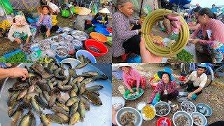 Bất ngờ Chợ cá đồng Miền Tây mùa nước nổi toàn đặc sản giá rẻ bèo