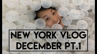 Life in New York - December Part 1 (the first snow of the season)