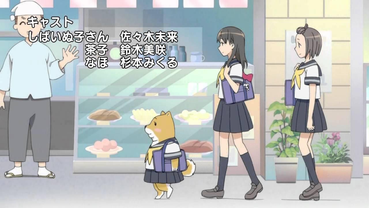 Image result for shiba inuko san