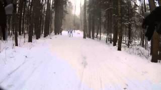 Дмитров: лыжная гонка 15 км,06.02.2016