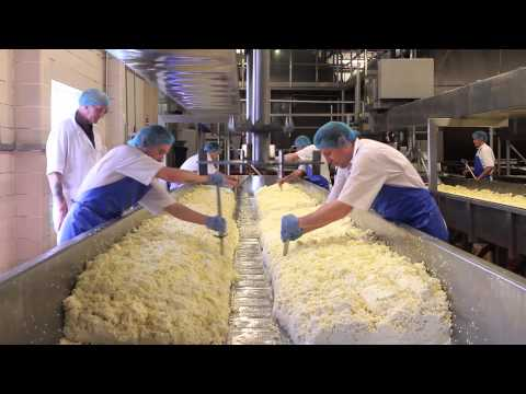 cheese-making-process