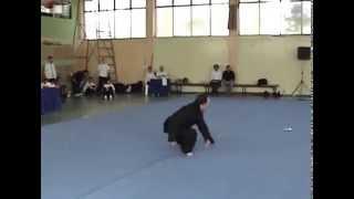 Bei Shaolin #6 Duan Da (Short Strike)