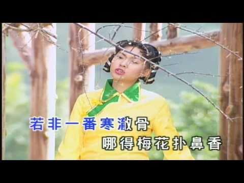 卓依婷 (Timi Zhuo) - 梅 花 三 弄 (Three Songs of Plum Blossom)