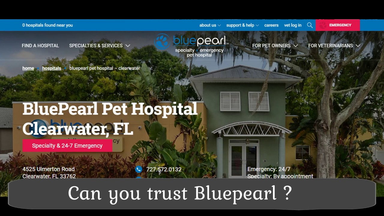 Blue Pearl Clearwater >> Can You Trust Bluepearl Pet Hospital Clearwater Fl Youtube