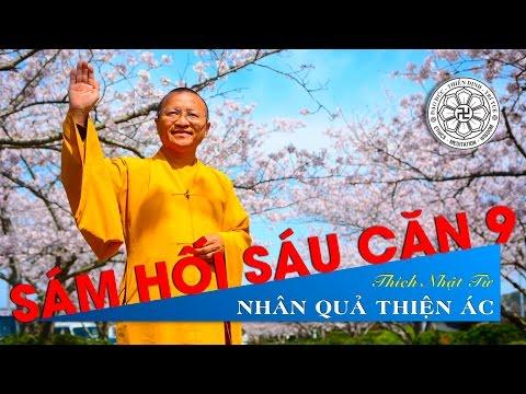 Kinh Pháp Cú 09: Nhân quả thiện ác (07/11/2010) Thích Nhật Từ